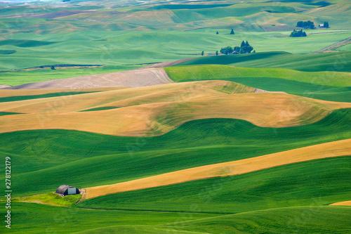 Foto op Plexiglas Groene Beautiful Farmland Patterns Seen From Steptoe Butte, Washington. High above the Palouse Hills on the eastern edge of Washington, Steptoe Butte offers unparalleled views of a truly unique landscape.