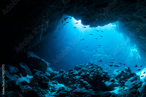 Cadres-photo bureau Recifs coralliens Underwater cave