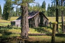 Rustic Farm Barn In Sierra Nevada Mountains, California