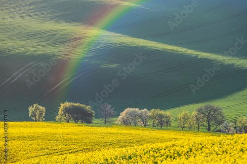 Foto auf Leinwand Olivgrun Rural landscape with fields