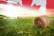 National Agricultural Industry Concept - Idyllic Farm Field With Hay Bales On On The Background Of The Canada Flag (mixed).