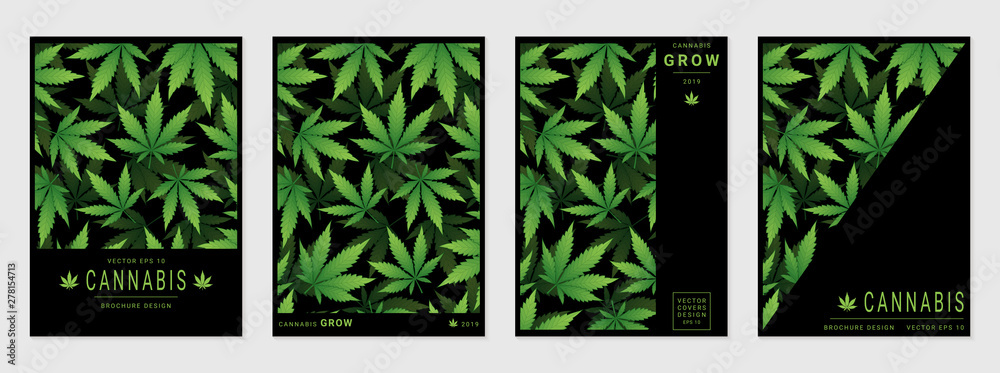 Fototapety, obrazy: Set of vector cover templates with cannabis leaves for business, advertising, exhibition, party and etc.