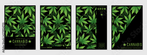 Fototapeta Set of vector cover templates with cannabis leaves for business, advertising, exhibition, party and etc