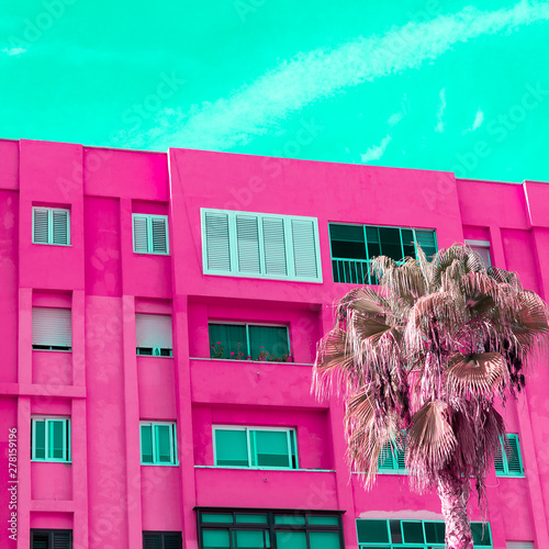 Spoed Fotobehang Roze Tropical palm. Canary island. Candy colours concept