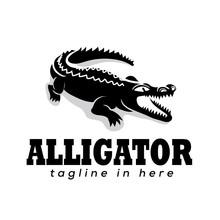 Aggressive Wild Crocodile Logo Design Inspiration