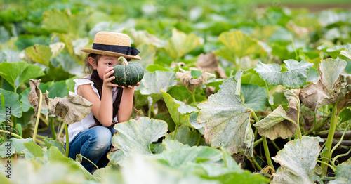 Fotomural カボチャを収穫する女の子