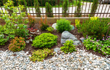 Landscaping In Home Garden, Beautiful Landscape Design Of Backyard Or Yard. Landscaped Area With Plants And Stones At Residential House.