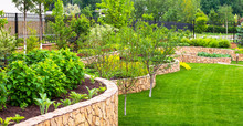 Landscaping In Home Garden. Beautiful Natural Landscape Design With Flower Beds In Summer. Panoramic View Of Landscaped Part With Plants In Yard Or Backyard Of Residential House.