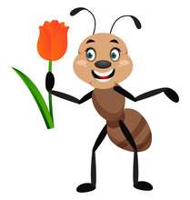 Ant With Rose, Illustration, Vector On White Background.