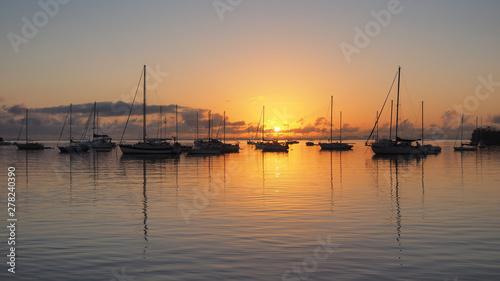 Sunrise over Dinner Key Marina in Coconut Grove, Miami, Florida. Wallpaper Mural
