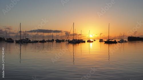 Fototapeta Sunrise over Dinner Key Marina in Coconut Grove, Miami, Florida. obraz