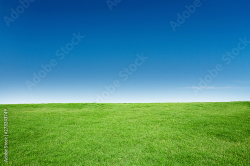 Poster Gras Green Grass Texture with Blang Copyspace Against Blue Sky