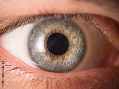Pinturas sobre lienzo  Human eye close up