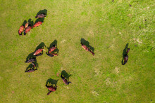 Horses Grazing In A Meadow Next To A River. Country Landscape. View From Above.