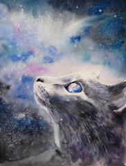 Cat under Blue Galaxy Nigh...