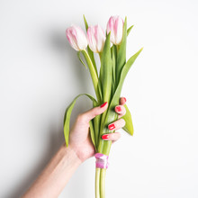 Woman Hand With Manicure Holding Tulips Flowers