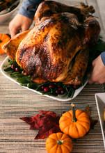 Thanksgiving: Woman Puts Roasted Turkey Platter Onto Table