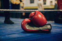 Boxing Gloves In The Floor Ring