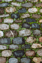 Paved And Moss
