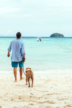 Young Man Walking A Dog On The Beach
