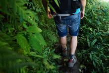Unrecognizable Adventure Traveler Trekking Through The Jungle.