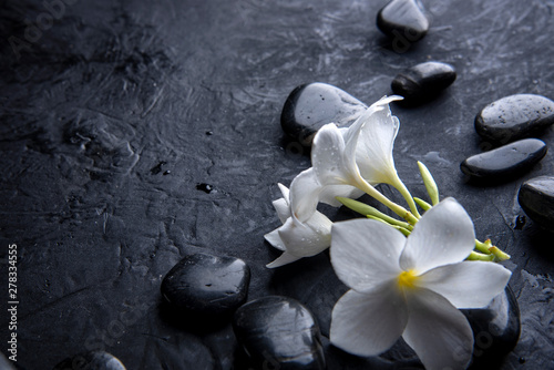 Orchidée zen basalt stones with frangipani flower on dark table background
