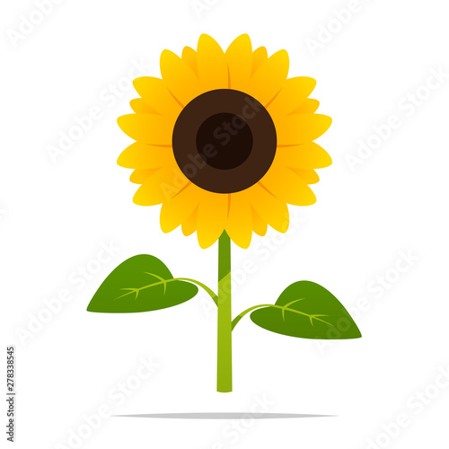 Cartoon sunflower vector isolated illustration Fotobehang
