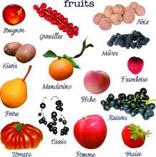 FRUITS - Planche 1