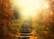 Leinwandbild Motiv Autumn background, stairs to the sky. amazing mysterious road steps leads to mystical world, fairytale path hides among yellow and orange trees, magical October in foggy forest, beauty of nature