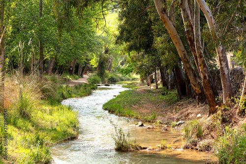 Cadres-photo bureau Rivière de la forêt water route with river flowing