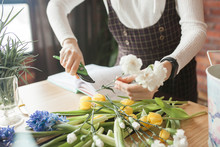 Florist Cutting Flowers And Ma...
