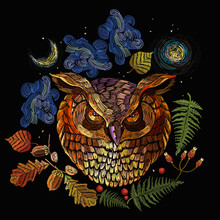 Owl And Night Forest. Magic Em...