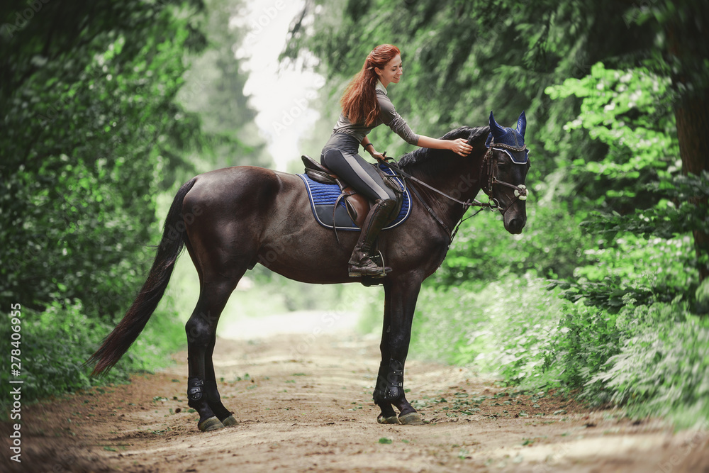 Fototapety, obrazy: portrait of attractive woman riding black hanoverian stallion horse