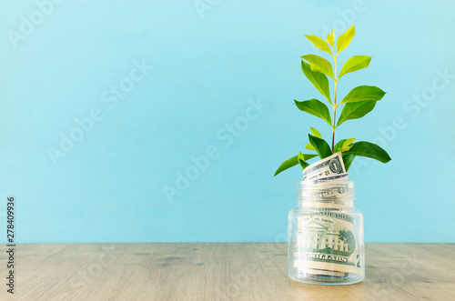 Tablou Canvas Business image of plant growing in savings jar, money investment and financial g