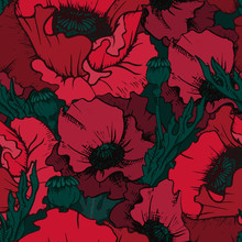 Vintage Seamless Pattern. Design Burgundy And Red Poppy Flowers, Poppy Head And Leaves. Succulent Blooming Buds In Dark Colors. Dark Background.