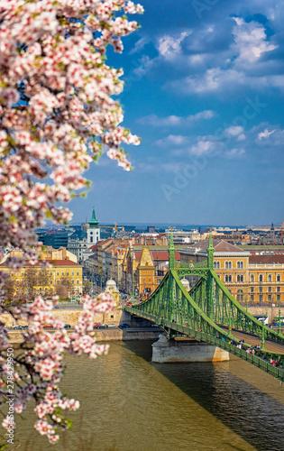 Fotografie, Obraz  Liberty Bridge in Budapest, Hungary