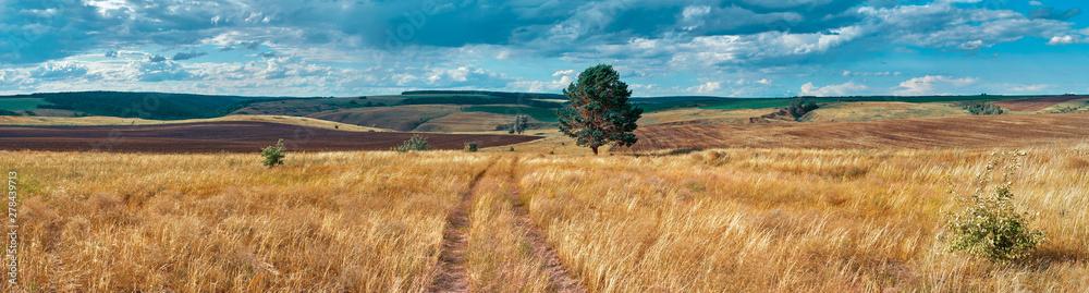 Panoramiczny krajobraz wsi rolniczej Rosji centralnej ze wzgórz i wiejskiej drodze. Letni krajobraz dolin Samary. Rosyjska wieś. Plik wysokiej rozdzielczości do drukowania wielkoformatowego. <span>plik: #278439713 | autor: vasilygureev</span>