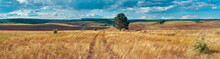Panoramic Landscape Of Central Russia Agricultural Countryside With Hills And Country Road. Summer Landscape Of The Samara Valleys. Russian Countryside. High Resolution File For Large Format Printing.