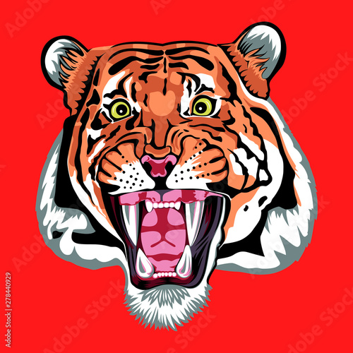 Photo  Sher Khan; the enemy of Mowgli