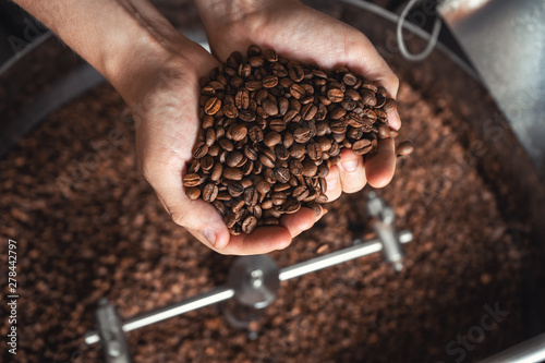 Poster Café en grains Grains of fresh coffee roasting in hands on the background of the roaster