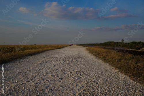 Florida Everglades gravel path