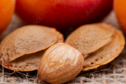Fresh Organic Apricots and Apricot Kernels (the seed of an apricot, often called a stone) on natural burlap background Canvas Print