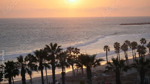 Obraz na płótnie Oceanside beach with palm trees