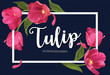 Blooming beautiful pink tulip flowers on blue background template. Vector set of blooming floral for wedding invitations, greeting card, voucher, brochures and banners design.