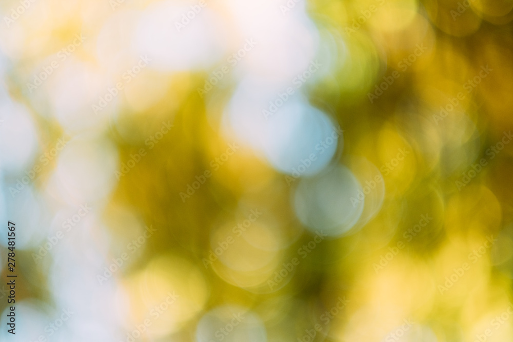 Fototapety, obrazy: Golden white bokeh lights. Defocused lens flare. Autumn foliage effect. Abstract art background.