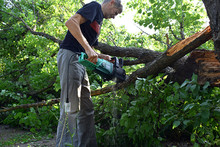 The Man Cuts Off The Branches Of A Broken Tree.