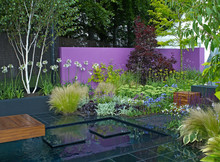 A Colourful Modern Garden Design With A Range Of Flowers, Plants And Shrubs, Decking, Water And Architectural Features