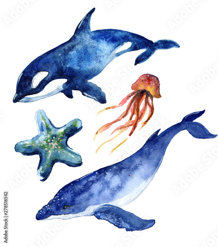 Akwarela słodki wieloryb. Ilustracja rekina