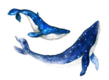 Cute Watercolor Whale. Dreams ...