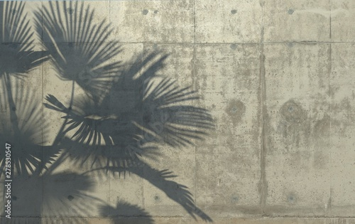 liscie-palmowe-rzucaja-cien-na-betonowa-sciane-konceptualna-kreatywnie-ilustracja-z-kopii-przestrzenia-betonowa-dzungla-rendero